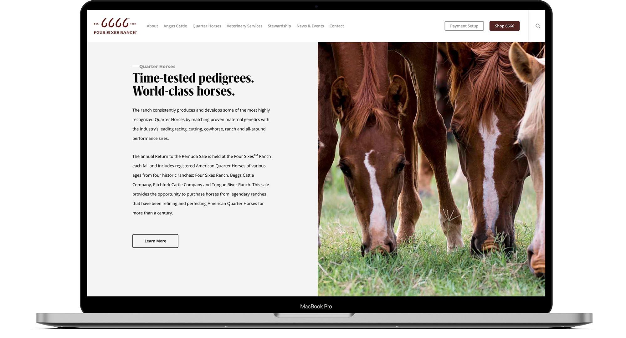 6666 Ranch Website- Design Desktop