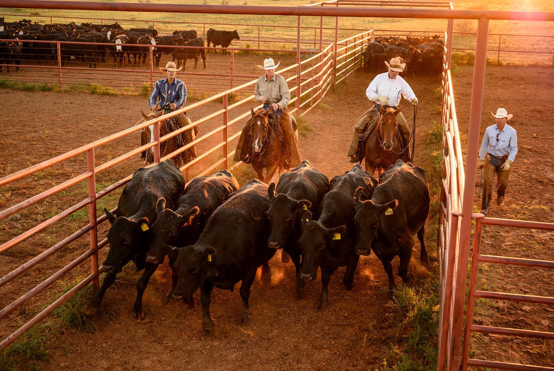 Four Sixes Ranch Texas